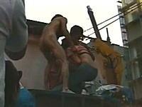 道頓堀で全裸男が女性のブラを剥ぎ取ろうとしている伝説の動画発見w