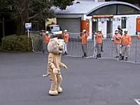 東京の動物園からトラが脱走し係員を襲う!大変だ捕まえろ!という訓練