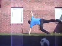 これは酷いwブレイクダンスするご主人様に近づいてぶっ飛ばされるネコさん