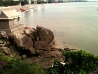 お猿さんも度胸試し?岩の上からクリフダイビングを楽しむお猿さんたちの映像