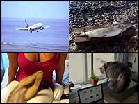 1000mg小ネタ集Part.87。猫が飛びつかれてビックリ!というか俺がビックリ!w