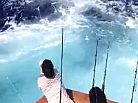 危なすぎw(゚o゚)w約160kgのクロカジキが船に飛び込んで釣り人をなぎ倒す!