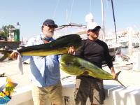 まさか船の上で奪われるとは・・・。でっかいシイラを釣ってきたぜと記念撮影していると。