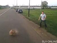 何がしたんだ?道路を走るトラックの目の前に突然大きな石を投げつける男性。
