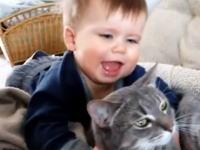ペットで飼っているニャンコと人間の赤ちゃんの関係。今日のほのぼのビデオ。