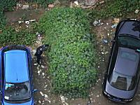 中国で凄い状態で発見された放置自動車が撮影される。どんだけ放置してたんw