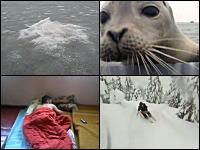 1000mg小ネタ集。極寒のロシアの湖で氷を突き破って出てきたものとは!?