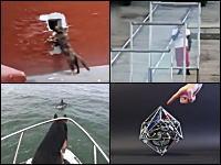 1000mg小ネタ集。ガラス突き破り世界記録に挑戦した男性がwwwワロタwww