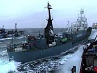 シー・シェパードの海賊船が日本の調査船に体当たり攻撃。その映像が公開。