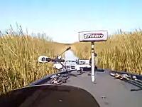 ギリギリ回避。バスボートでカーブを曲がったら対向艇が!良く避けられた船載。