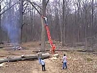 これは不運。木の枝を切り落とす作業をしていた男性に危険なアクシデントが。