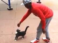 餌で釣った子猫を蹴り飛ばす動画をFacebookにアップして逮捕された男。その映像。