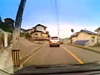 いるいるこんな車www電柱が来るたびに避けて通るランクルさん。