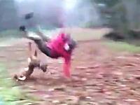 訓練されたワンコのタックルはこんなにも強烈。大人ばぶっ飛ばされる動画。