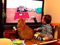 NHKのピタゴラスイッチを真剣に眺めるニャンコと赤ちゃんがカワイイと人気に。