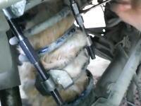 どうやって入ったwww自動車のコイルスプリングの中で身動きが取れなくなっていた猫を救出