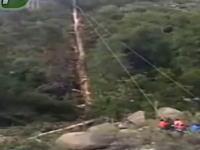 巨木の伐採で倒れる方向に逃げてしまった作業員が直撃を受けてしまう事故の映像。