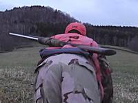 北海道のエゾシカ猟師さんによるライフル銃を使ったエゾシカ猟のすべて。解体あり。