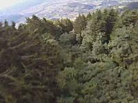 ウイングスーツで低空飛行。斜面の木の上スレスレを飛ぶムササビ男のビデオ。