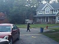 中の人の存在を疑いたくなるようなアメリカグマの姿が撮影されYouTubeで人気に。