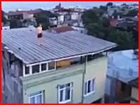 プールの幻覚を見た男。屋根の上から「無いプール」に飛び込んだ男性が・・・。