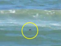 この波は危険すぎる・・・。海で溺れて力尽きていた男性を救助する一部始終。