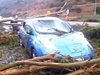 高速道路を走行中に倒れてきた木の下敷きになってしまった日産リーフの車載ビデオ。