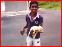 小犬のしっぽを掴んでブンブン振り回して放り投げて殺す少年の映像が投稿される。