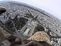イーグルカム。パリの街を飛ぶワシに小型カメラを取り付けたら凄い映像が撮れた。