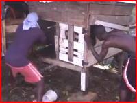 女性を襲ったピットブルが村人たちに撲殺される。苦痛の叫び声が・・・。注意。