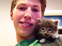 「サイレントニャー」たぶんみんなが笑顔になれそうな子猫の6秒動画。