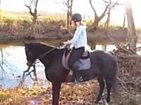 川に入るのを拒否したお馬さんに「川は怖くないのよ」と教えてあげたらww