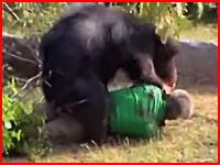 インドで大きな熊に襲われた村人が噛み殺される事件がの映像が公開される(((゚Д゚)))