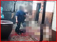 犬を次々に撲殺。中国の犬皮工場での犬の扱いが酷すぎる動画。動物愛護団体による潜入隠し撮り。