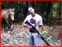 なんで殺したの(´°_°`)ショットガンでお馬さんを殺害する映像をネットに投稿