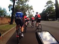 なんという不運。トレーニング走行中の自転車の集団が●●に襲われてしまう瞬間