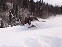 これが野生の馬力か。深い雪の中を猛スピードで走り去るムースがすげえ動画。
