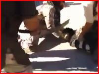 新しく投稿されたイスラム国の斬首映像。もの凄くデカい剣で首を刎ねる(@_@;)
