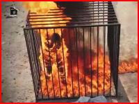 イスラム国が新たな処刑動画を公開。ヨルダン人パイロットを生きたまま焼き殺す。