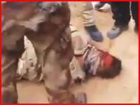 イラク軍兵士の恰好をしてIEDを仕掛けていたイスラム国兵士が捕らえられボコられて殺害される