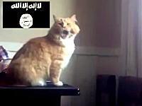 なんだよこの動画wwwネット民たちがイスラム国のアッラーフ・アクバルで遊んでる。