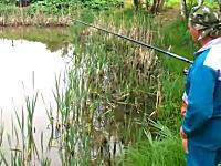待ち伏せしていたニャンコwwwそれに驚いて焦りまくる釣り人wwwネコの勝利w