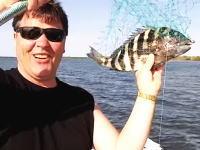 人間にとても良く似た歯を持つ魚「シープスヘッド」これ完全に人間の前歯や。