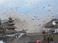 鳥たちも大パニック。ネパール大地震発生の瞬間を撮影した恐ろしい映像3つ。