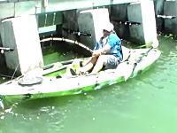 これは叫ぶわwwwカヤック釣りで超巨大な魚を釣り上げた男の雄叫び!すげえwww