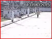 身内の犯行か?散歩にでようとしたワンちゃんたちを射殺する男の映像。