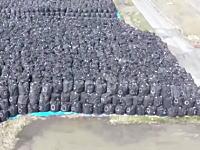 こんなのどうすんだよ・・・。東電事故で福島に積み上げられた核廃棄物の山。