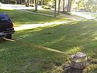 結果が見えてる動画。切り株を車で引っこ抜こうとしてwwwこれはワロタわwwww
