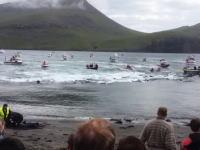 イルカ追い込み漁を妨害しようとしていたシー・シェパードの活動家2名が警察に拘束される瞬間。漁師たち大喜びww