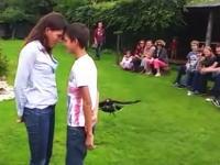 鷹ってこんな器用な飛び方できるんだ!?接吻間際の男女の隙間をシュリン!